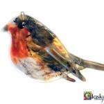 vogel roodborstje glas